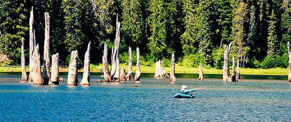 Pesca desde pato. Foto de Steve Bisig