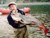 PeZcaleros Viajeros: pesca deportiva en Rusia