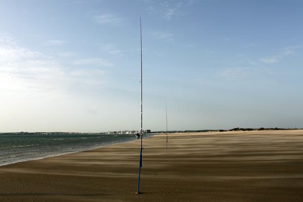 Para pescar doradas debemos escoger horarios en los que las playas estén libres de bañistas.