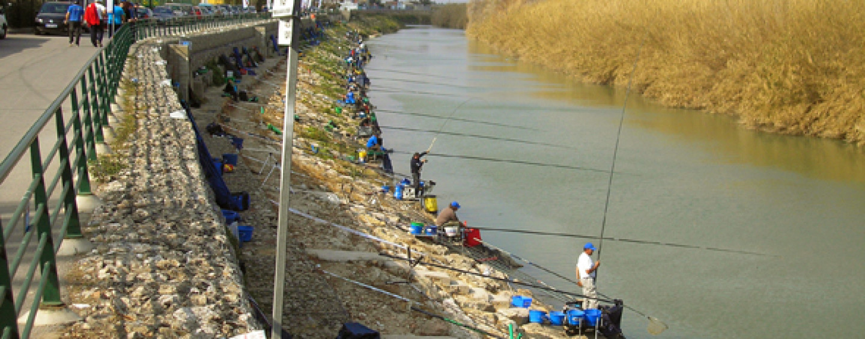 Concursos de pesca, ¿sí o no?