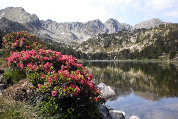 De pesca por Andorra