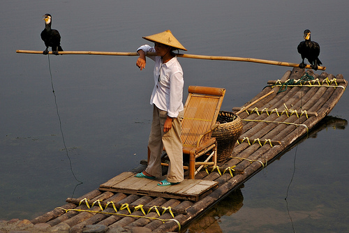 Pesca con cormorán
