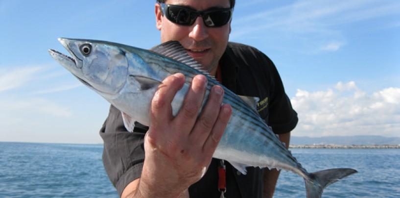 Pesca en las pajareras otoñales