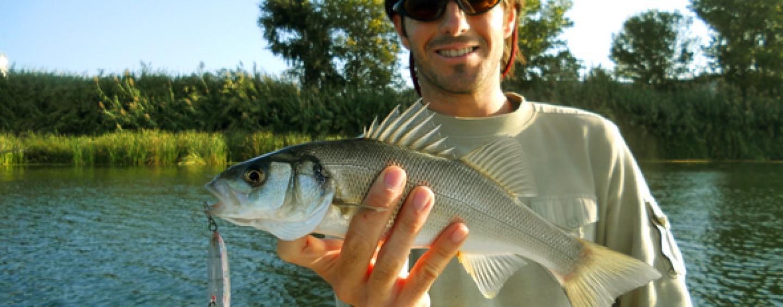 5 especies que pescar en otoño