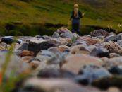 Vídeo de pesca a mosca en Islandia