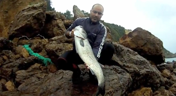 pesca-lubina