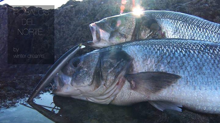 Vídeo de pesca: salitre en vena, vídeo nacido a raíz del documental Róbalos del norte.