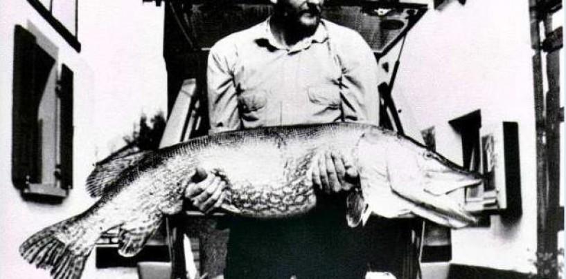 Récords mundiales en la pesca del lucio