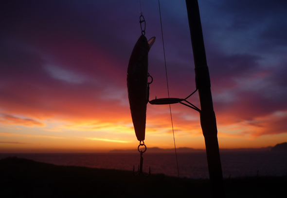 Señuelos, buscando la perfección en forma de pez