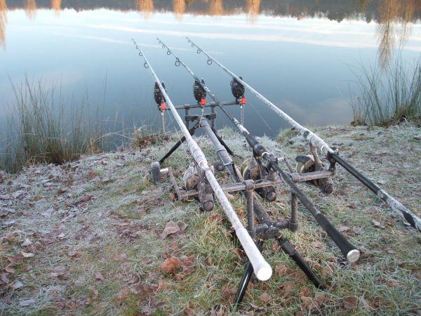 Pescar carpas en el invierno
