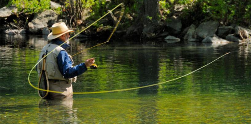 Pezcador al día, principales noticias de pesca (Mayo 2016, 5)