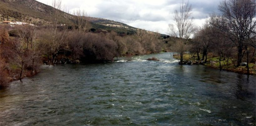 Los ríos trucheros de España (II): El río Lozoya en Madrid