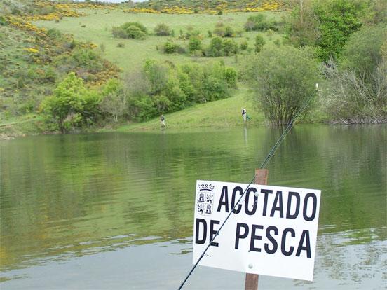 acotado-pesca