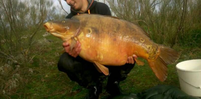 Pesca de grandes carpas al inicio de la primavera