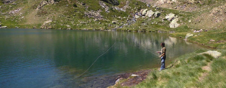 Pesca de truchas con señuelos artificiales suspending
