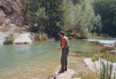 Spinning de verano: Las mejores cucharillas para pescar en superficie