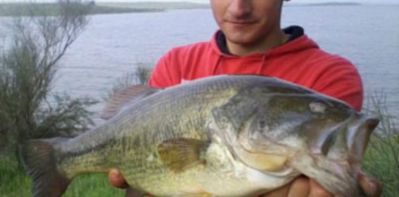 La pesca de black bass de gran tamaño en primavera