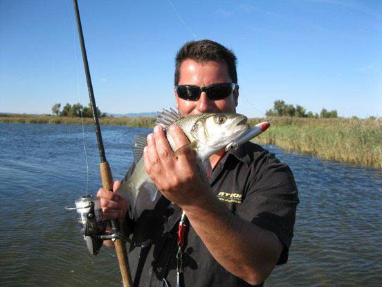 pesca-de-lubinas-1