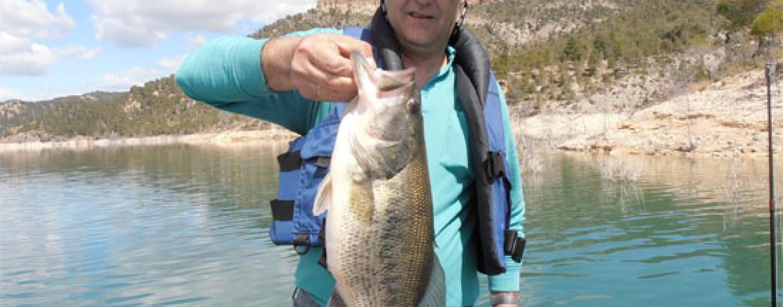 Pesca sin dolor ¿el siguiente paso a la captura y suelta?