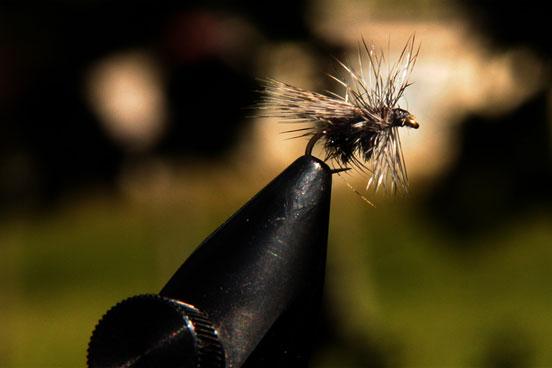 la pesca a mosca