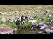 Video de pesca del Salvelino