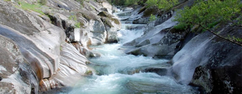 Pesca en el río Jerte, desde Tornavacas a Plasencia