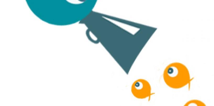 4 webs básicas para planificar tu salida de pesca