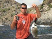 Video de Pesca de Lubinas y  Sargos a Spinning