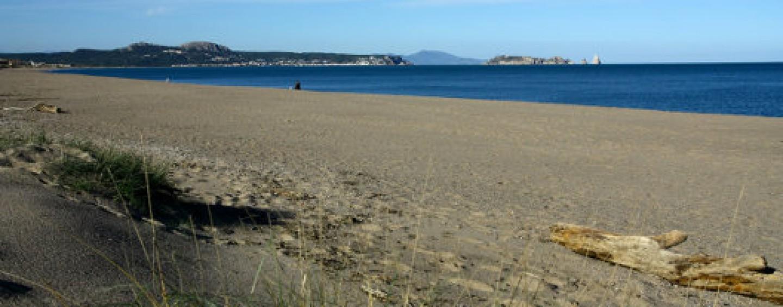Cursos de pesca en la playa de Pals/Estartit, julio y agosto 2014 (GIRONA)