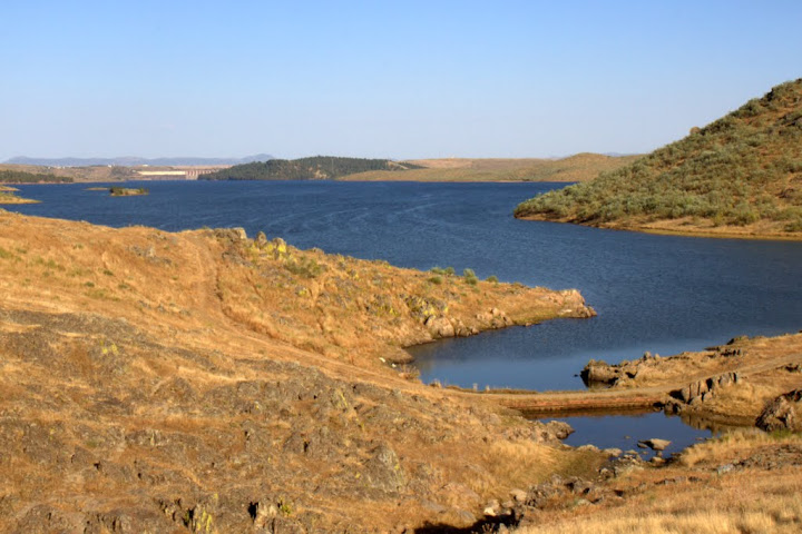 embalse en verano la pesca de carpas