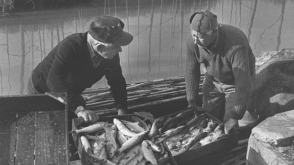pesca-Albufera-Maite-Bartol--575x323