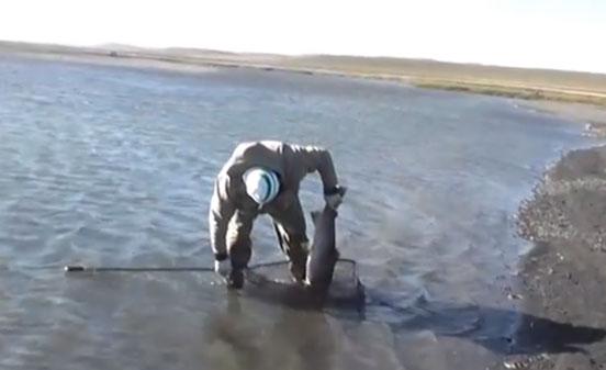 pesca_reos_tierra_fuego