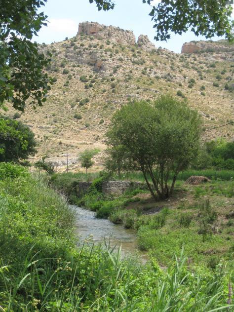 rio mesa