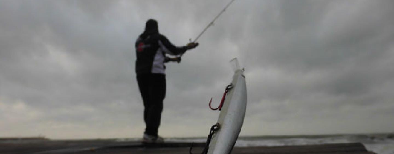 Cómo elegir la caña de pesca para spinning ideal