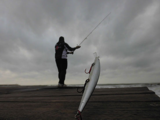 Lance con cañas de pesca para spinning