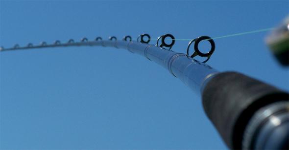anillas de caña de pesca
