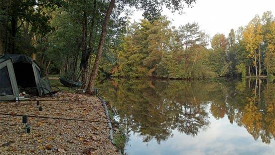 pescar carpas en otoño