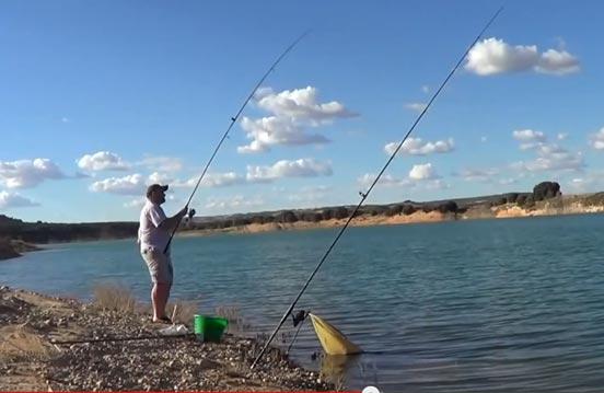 pesca de carpas a fondo