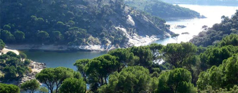 La importancia de la recuperación de nuestros ríos: El caso del río Cofio