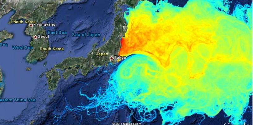 Lado positivo para la pesca deportiva en la catástrofe, Fukushima