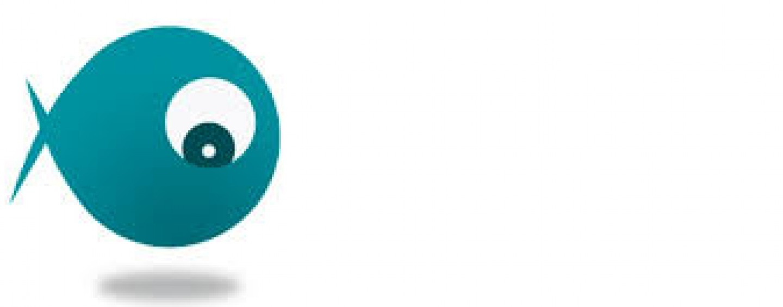 Los 10 artículos de pesca más leidos en Coto de PeZca en el 2014