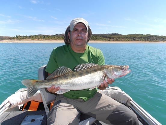 pesca de luciopercas con vinilo