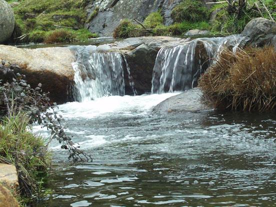 tramo de pesca fluvial