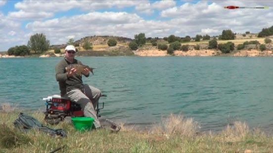 pesca carpa para principiantes