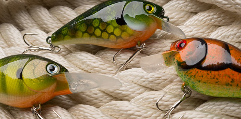 Pescando con señuelos crankbaits; como, donde y cuando