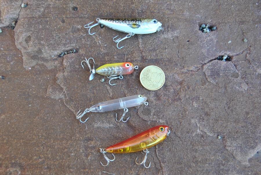 trucos para pescar lubinas