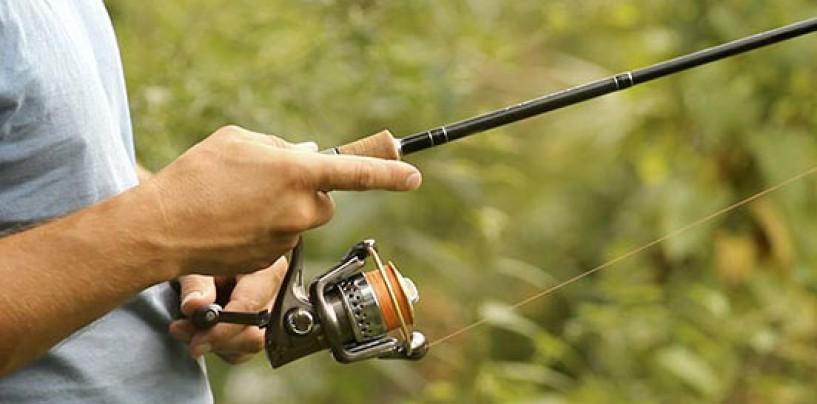 Pezcador al día: Principales noticias de pesca (enero 2015, 5)