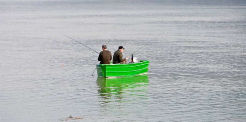 Pezcador al día, principales noticias de pesca (Septiembre de 2017, 2)