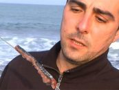 Video de pesca de como anzuelar sardinas para surfcasting