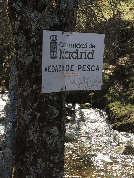 Pesca en Madrid